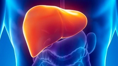 Hepatitis: ¿Qué es y por qué se asocia a la obesidad y diabetes?