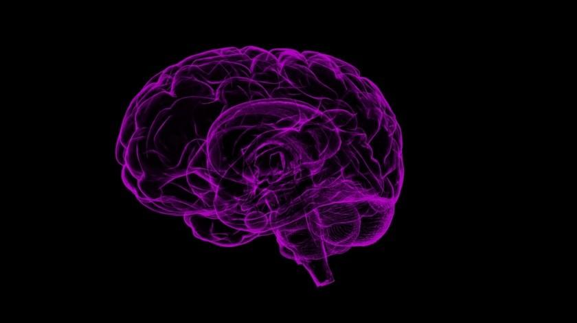 Expertos encontraron que los tumores se ocultan de la quimioterapia en una zona del cerebro.(Pixabay)