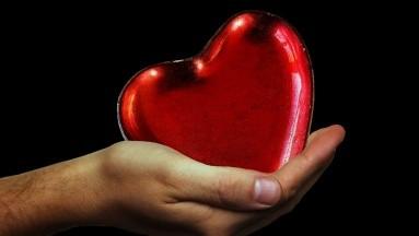 Comparado con los corazones normales, los corazones que fallan también liberaron más aminoácidos, lo que sugiere una mayor descomposición y renovación de proteínas.