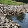 Covid-19: Análisis de aguas residuales podrían ayudar a predecir propagación